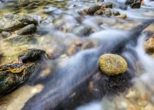 voda potok
