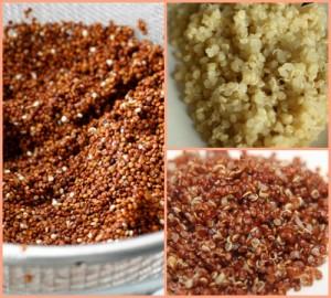quinoa cervena a bila