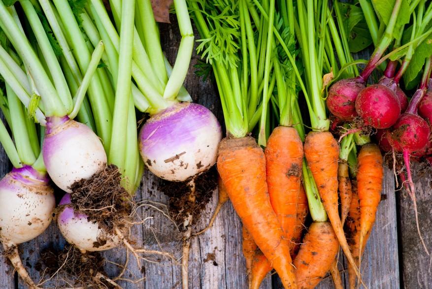 Zelenina vykartáčuje odpad z detoxu